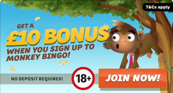Bingo bonus deposit no sign up gambling room walkthrough